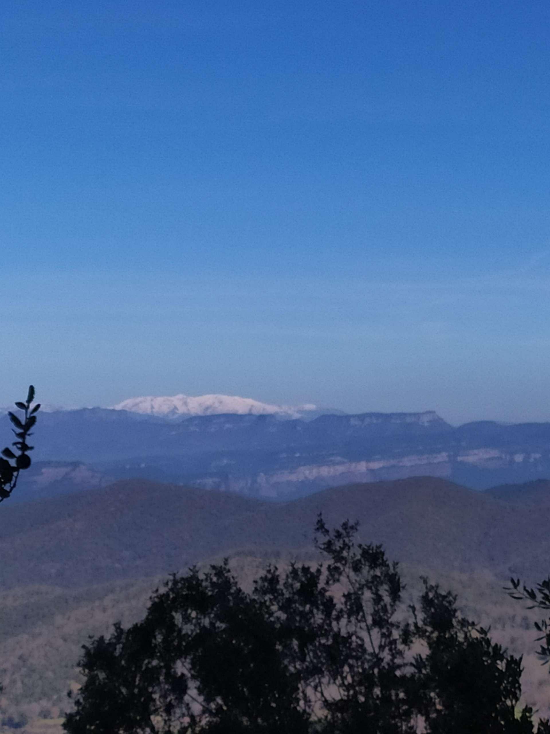 TECNO-camps formaciones intensivas en el campo